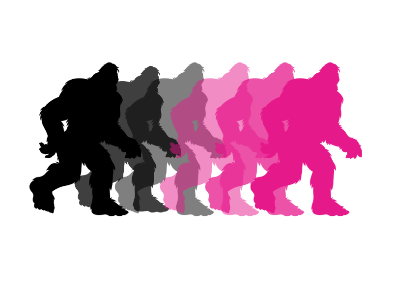 Sassquatch Pink